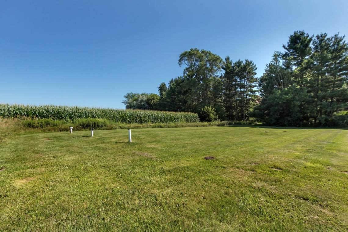 1-Corn-field-2