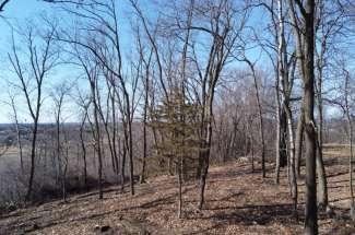 1.91 Acre Lot – 368 Peaceable Hill Rd, Hudson WI 54016