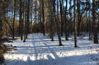 Lot 4 32nd Street South, Afton, MN 55001